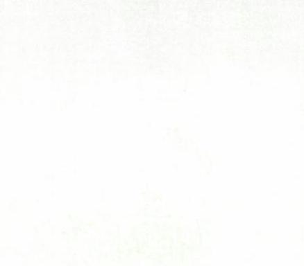 Grunge Basics White 30150 58 Moda Basic
