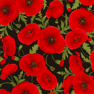 Tossed Poppies Poppies-C5837-Black