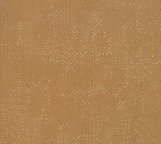 Spotted Toast 1660 18 Moda