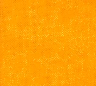 Spotted Cheddar 1660 15 Moda